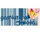 servicio tecnico de calderas de gas natural